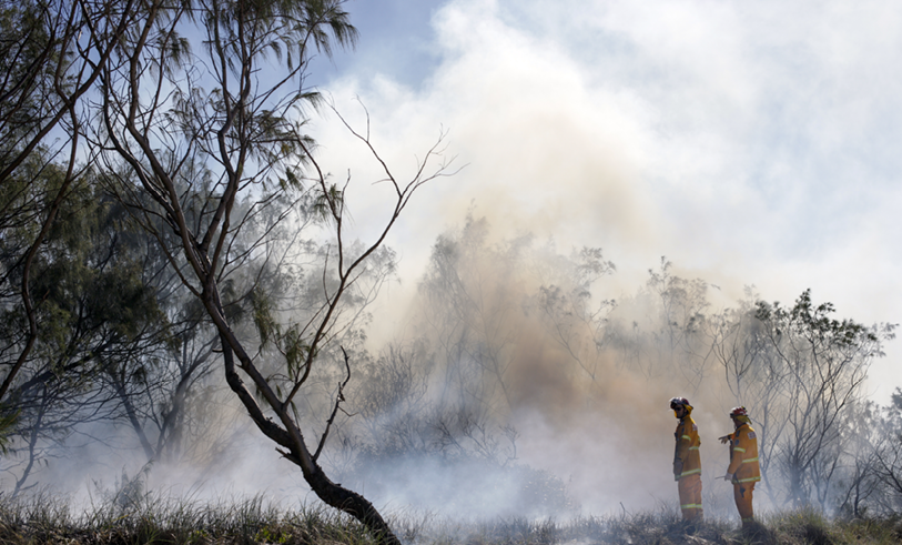 bushfire with firefighter