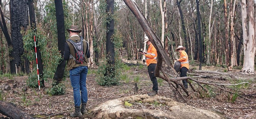Shawn Ross, Cass Venn and Bec Parkes recording historic mining camps at Nellie Glen